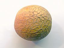 Musk Melon. Cuvumis melo L, Maharashtra, India Royalty Free Stock Images