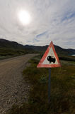 Musk Ox road sign in Greenland Royalty Free Stock Image