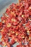 Muskatblüte der Muskatnuss Stockfoto