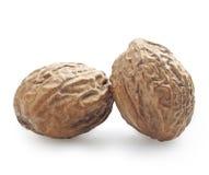 Muskatnuts lizenzfreies stockfoto