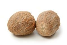 Muskatnuts Stockfotografie