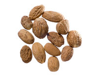 Muskatnuts stockfotos