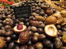 Muskatnuts ausgebreitet in der Landschaft Stockbilder
