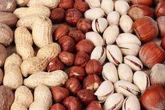 Muskatnuts, Erdnüsse, Haselnüße und Mandeln lizenzfreies stockfoto