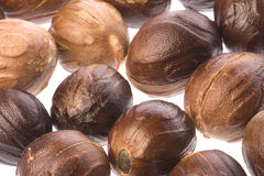 Muskatnuts-Makro trennte lizenzfreies stockfoto