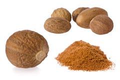 Muskatnuts (Myristica fragrans) stockfotografie