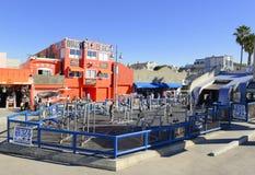 Muskel-Strand an Venedig-Strand Kalifornien, USA Lizenzfreie Stockbilder