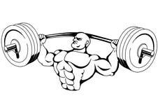 Muskelkroppsbyggare Arkivfoto