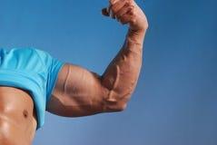 Muskelmann Stockbild