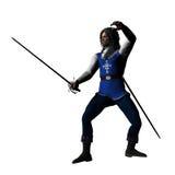 Musketeer en garde Royalty Free Stock Photos