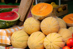 Muskmelon Stock Image