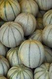 muskmelon Стоковое Фото