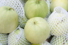 Muskmelon Stock Images
