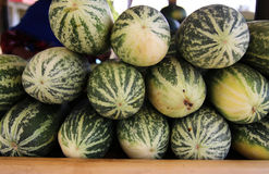 Muskmelon fruit Royalty Free Stock Images