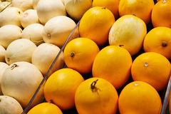 Muskmelon  fruit Royalty Free Stock Photography