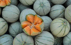 Muskmelons Royalty Free Stock Photos