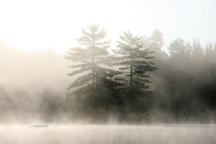 Muskoka Shoreline on a Misty Morning - Royalty Free Stock Photography