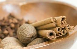 Muskotnötkanel och kryddnejlikor Arkivfoto