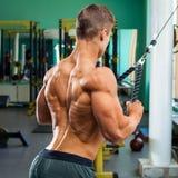 Muskulös baksida, kroppsbyggareman som gör sweatern för lats i idrottshall Stark manlig naken torso som utarbetar royaltyfria foton