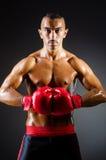 Muskulös boxare i studio Arkivbilder