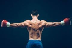 Muskulös boxare i studioskytte, på svart Fotografering för Bildbyråer