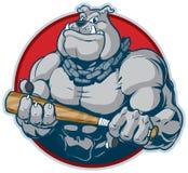 Muskulös bulldogg med illustrationen för slagträmaskotvektor vektor illustrationer