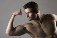 Muskulös caucasian man Royaltyfria Bilder