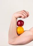 Muskulös frukt för arminnehav Royaltyfri Foto