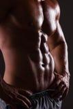 Muskulös male torso fotografering för bildbyråer