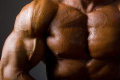 Muskulös male torso på mörkerbakgrund Arkivbilder