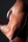 Muskulös man för stående på svart bakgrund Royaltyfri Fotografi