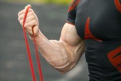 Muskulös man som utarbetar, biceps royaltyfri bild