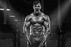 Muskulös man som utarbetar i idrottshall, kroppsbyggare, stark manlig torsoabs royaltyfri foto