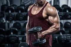 Muskulös man som utarbetar i idrottshallen som gör övningar med hantlar, kroppsbyggare royaltyfria bilder