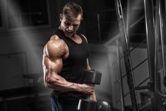 Muskulös man som utarbetar i idrottshallen som gör övningar med hantlar, stark man arkivfoton