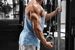 Muskulös man som utarbetar i idrottshallen som gör övningar på triceps, stark man arkivbild