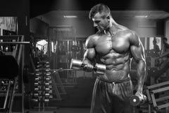Muskulös man som utarbetar i idrottshallen som gör övningar med hantlar på biceps, stark manlig abs Royaltyfri Bild