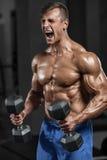 Muskulös man som utarbetar i idrottshallen som gör övningar med hantlar, stark manlig naken torsoabs royaltyfri foto