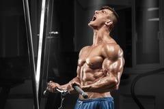 Muskulös man som utarbetar i idrottshallen som gör övningar på biceps, stark manlig naken torsoabs royaltyfri foto