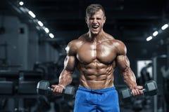 Muskulös man som utarbetar i idrottshallen som gör övningar, stark manlig torsoabs royaltyfri bild
