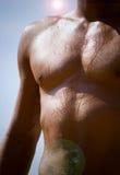 muskulös manlig Arkivfoton