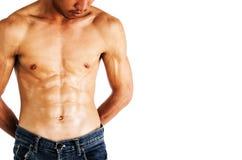 Muskulös manlig modell som visar hans abs Arkivbild