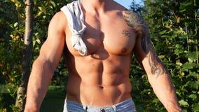 Muskulös Shirtless snygg manman som är utomhus- i bygd Royaltyfri Foto
