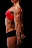 Muskulös stark kvinna Royaltyfria Bilder