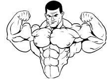 Muskulös torso av en kroppsbyggare Royaltyfri Fotografi