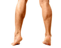 Muskulöse männliche Kälber Stockbild