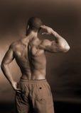 Muskulöse Mannesrückseite Lizenzfreies Stockfoto