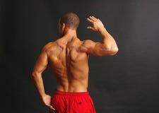 Muskulöse Mannesrückseite in den roten Kurzschlüssen stockfotografie
