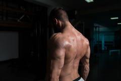 Muskulöse vorbildliche Doing Heavy Weight-Übung für Trapezius Lizenzfreies Stockfoto