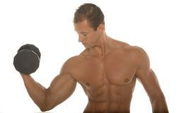 Muskulöser athletischer Karosserienerbauer, der mit Dumbbell ausarbeitet Stockfotos